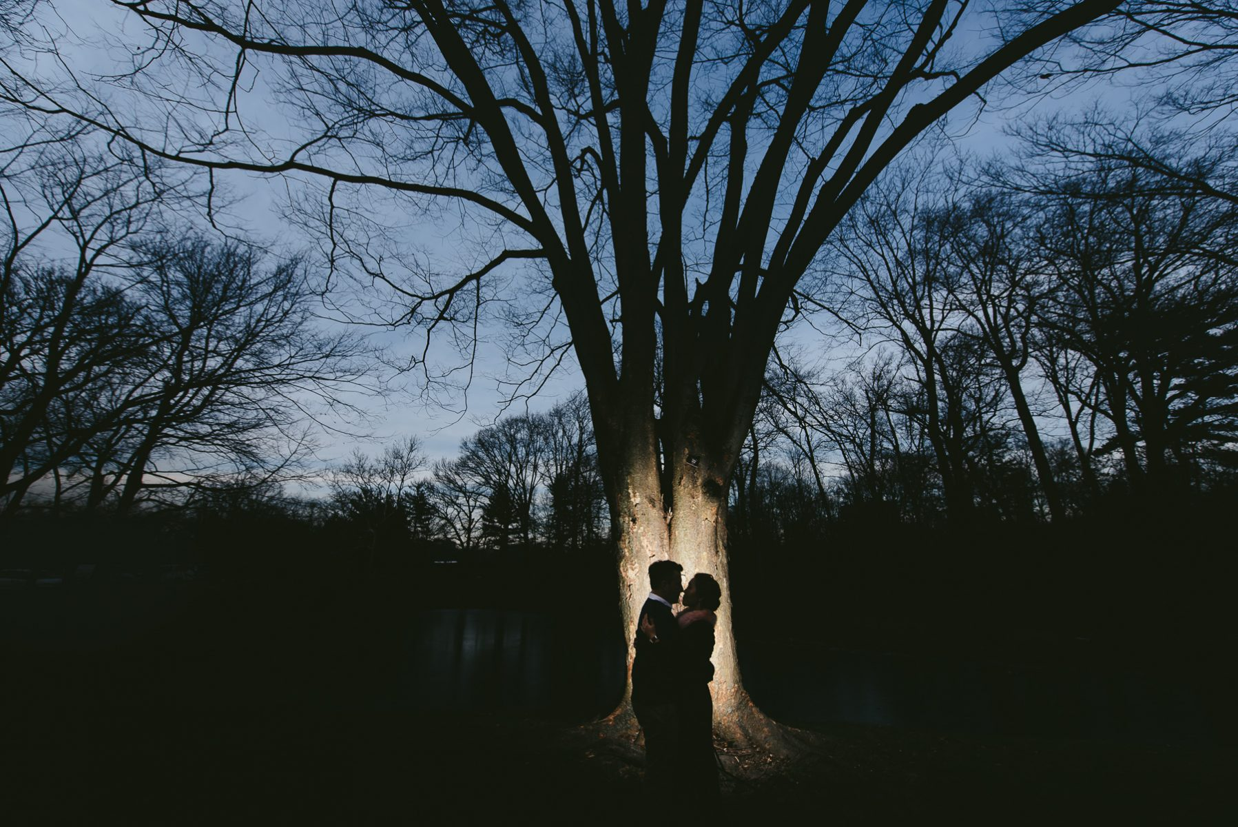 Bronx Botanical Garden engagement session